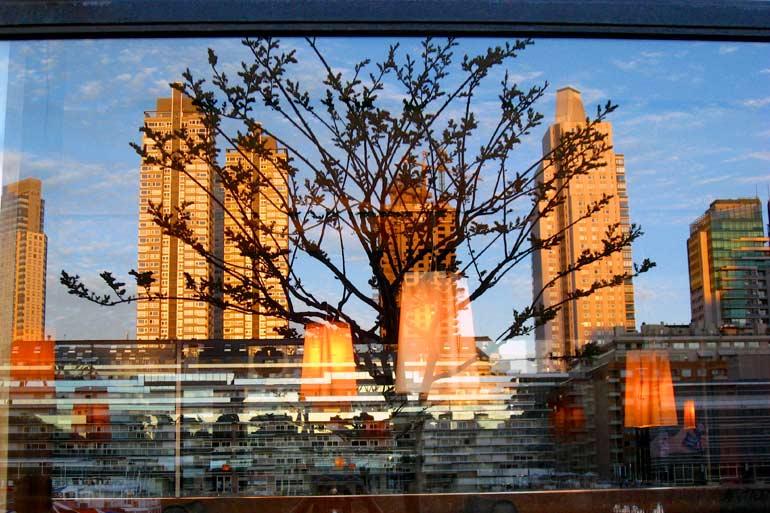 Puerto Madero Reflections